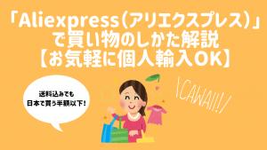 「Aliexpress(アリエクスプレス)」で買い物のしかた解説【お気軽に個人輸入OK】